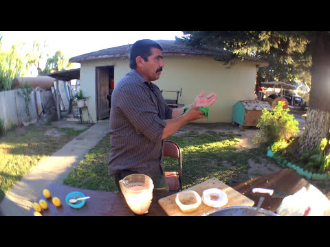 Como Preparar un Ceviche de Res Ft. Mi Papa