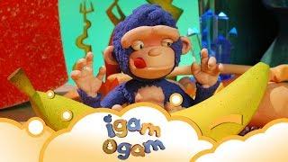 Igam Ogam: Not Now! S1 E21 | WikoKiko Kids TV