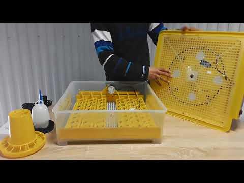Инвекторный автоматический инкубатор MS-48/24 (48 куриных яиц)