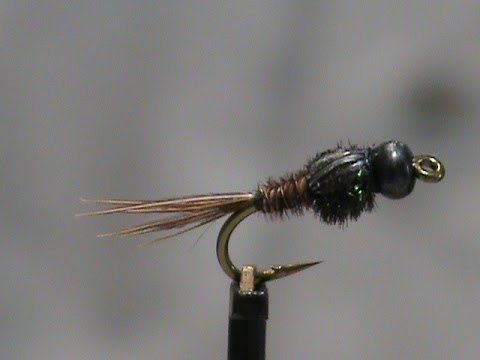 Beginner Fly Tying A Stiff Side Soft Side Pheasant Tail ...