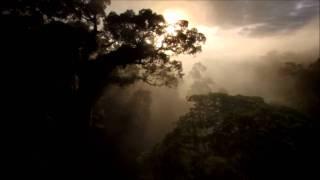 Tiësto - Ten Seconds Before Sunrise