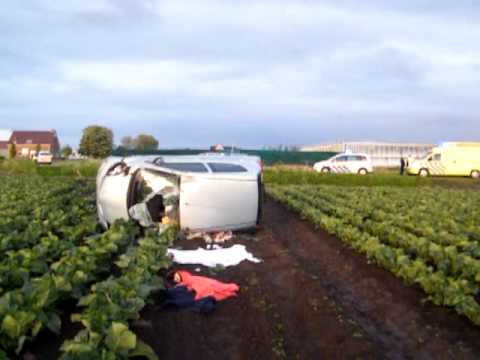 Auto tientallen meters het bloemkoolveld in bij Eenzijdig ongeval op de Geerling