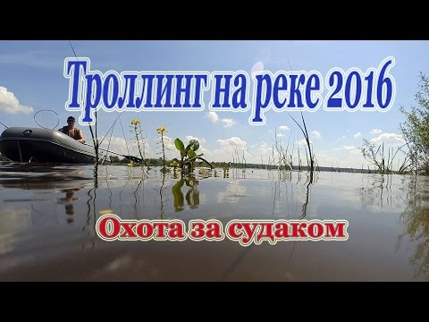 рыбалка для начинающих на реке