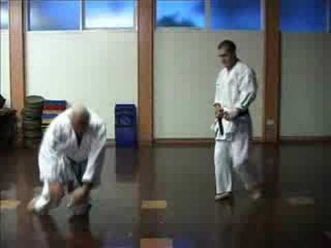 GOJU RYU KARATE - TRAINING TECHNIQUES 3 - BUNKAI Image 1