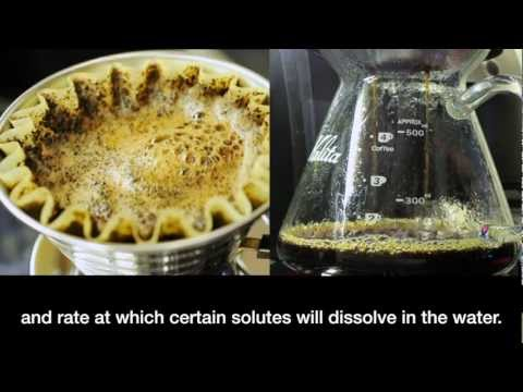 Kalita Wave Coffee Brewing : Intensive