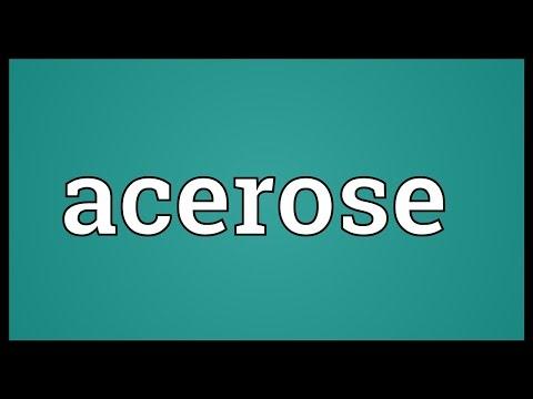 Header of acerose