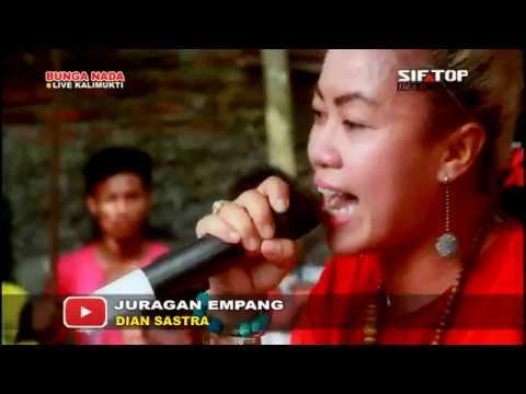 download lagu JURAGAN EMPANG - DIANA SASTRA  BUNGA NADA  Depri & Anis 25 Februai 2017 gratis