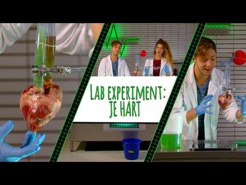 RACHEL EN ELBERT TESTEN HET HART! - LAB EXPERIMENT