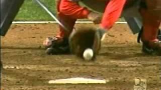 Chicago White Sox 2005 World Series Championship Playoff Run