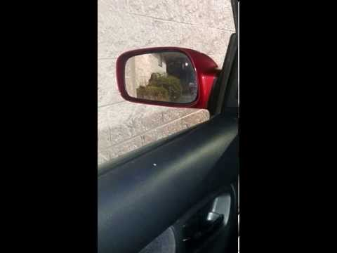 Girl Pissing In Mcdonald's Drive-thru! video