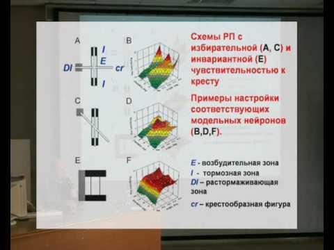 Лекция Распознавание зрительных образов