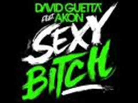 DAVID GUETTA feat  AKON -SEXY BITCH
