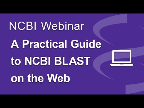 Webinar: A Practical Guide To NCBI BLAST On The Web