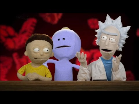 Rick and Morty Answer More IGN Reader Questions
