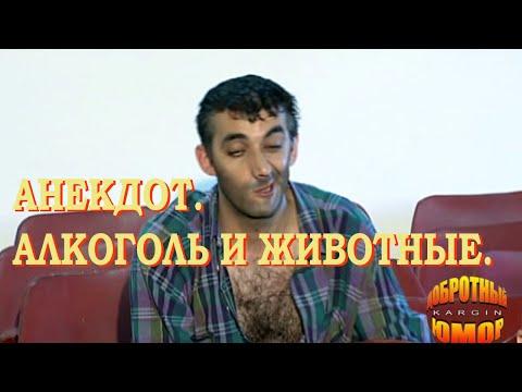 Добротный юмор (анекдоты) - Тупая скотина