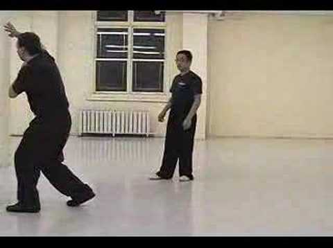 Ba Gua (Baguazhang, Bagua)  Applications---internal kung fu (martial art)  montreal Image 1