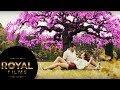 CRVENA JABUKA 2016 - DOLLY BELL (OFFICIAL AUDIO)