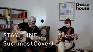 STAY TUNE/Suchmos (Cover)