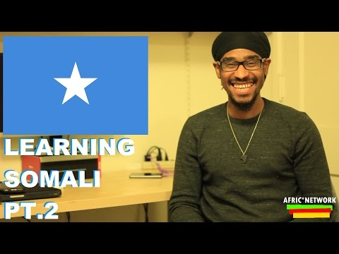 the difficulties in learning somali