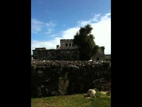 Video Of The Mayan Site Of Tulum video