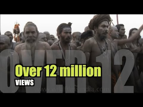 Naga Sadhu Does Naked Yoga During Ardh Kumbh Mela video