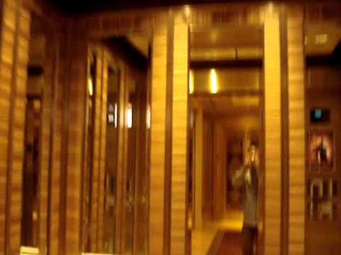 Otis Elevonic 411 High-Speed Elevators at Palazzo Hotel & Casino in Las Vegas, NV.