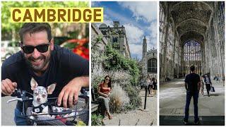 1 DIA EM CAMBRIDGE O QUE FAZER NA INGLATERRA além de LONDRES |   Travel and Share