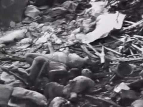 电影 南京大屠杀 中文版 第二部分 Nanjing Massacre Rape of Nanking Part 2