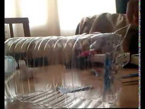 Trampa para peces casera y eficaz youtube - Como hacer una trampa para ratas ...
