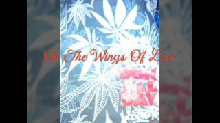 On The Wings Of Love : kyla with lyrics