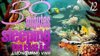 30 Minutes Sleeping Music 12 – Lương Bằng Vinh ★ 6 Hours of Relaxing Sleep Music ★