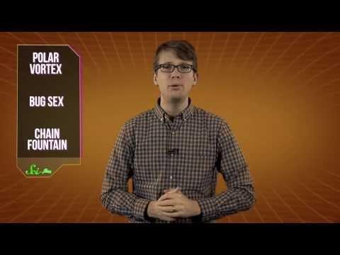 3 Freaky Things Explained: Bug Sex, Polar Vortex and Chain Fountain!
