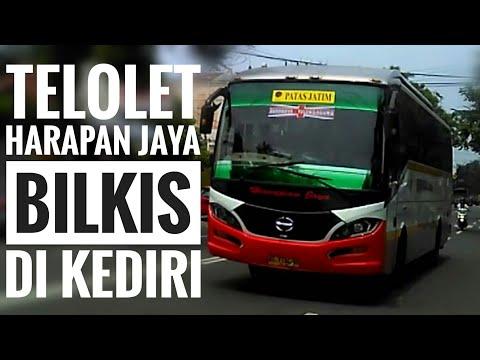 Telolet Bus HARAPAN JAYA (Naik Delman Istimewa & Jablay)-Om Telolet Om