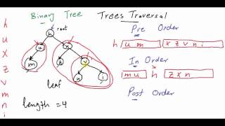 Tree Traversal Data Structure (3/3) [كود مصري]