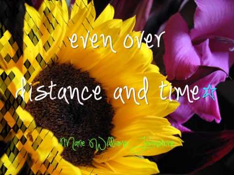 sunflower love quotes