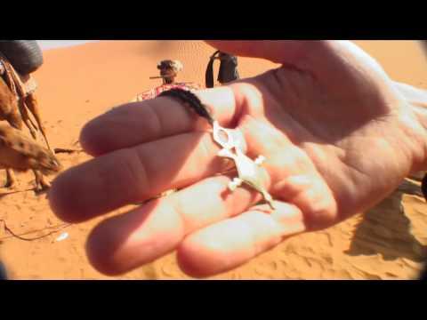 Longboarding Long Treks 2 Episode 6: Arabian Camel Caravan