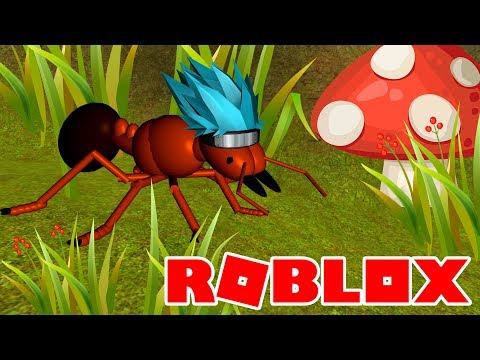 ЧЕЛОВЕК МУРАВЕЙ | ROBLOX | DAMON