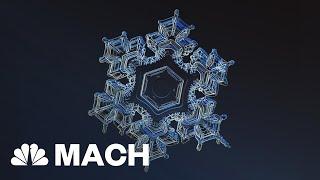 Anatomy Of A Snowflake: 35 Distinct Categories | Mach | NBC News
