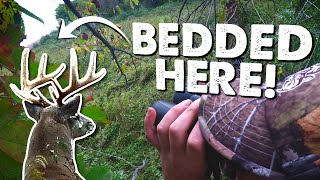 SET UP 60 YARDS FROM BEDDED BUCK - What Went Wrong? | Hunt Breakdown