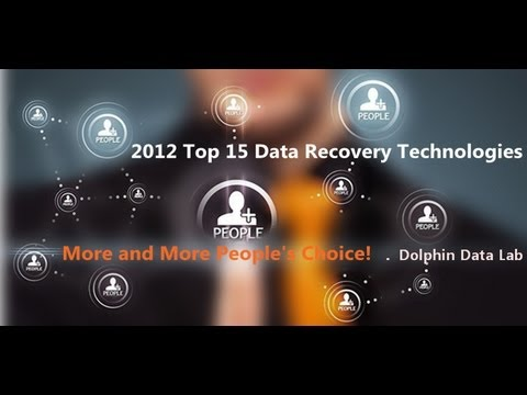 2013 Latest Data Recovery Tools & HDD Repair Tools by Dolphin Data Lab