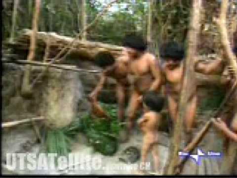 Амазонки видео онлайн порно 187