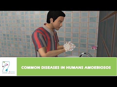 COMMON DISEASES IN HUMANS AMOEBIOSOS