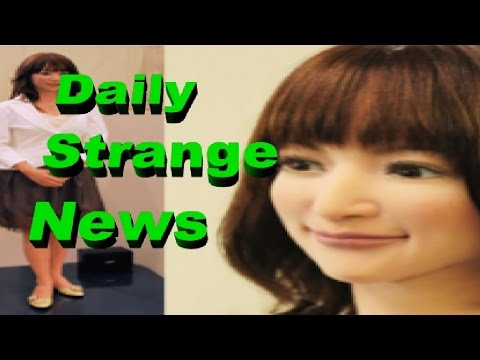 Robots Replace Jobs at Hotel and Even Programmers – Daily Strange News