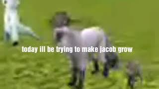 Trying to make Jacob grow up         (Fail)