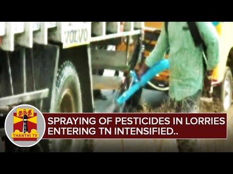 Spraying of Pesticides in Lorries entering TN intensified after Bird Flu rumours   Thanthi TV