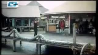 Bangla Movie Song  | Boss No.1 | Sakib and Sahara |