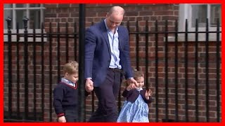 Royal baby: Prince George and Princess Charlotte leave Royal fans delighted as they wave to the
