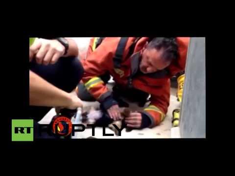 Vea a un bombero salvar la vida de un cachorro