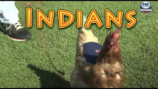 Cleveland Indians: Funny Baseball Bloopers
