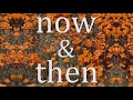 """Lily Kershaw - """"Now & Then"""""""